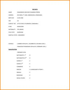 what is biodata for job application