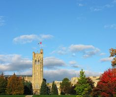 application for university in ontario